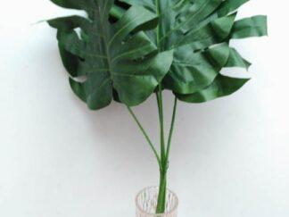 Planta extja041