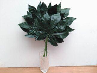 Planta extja045